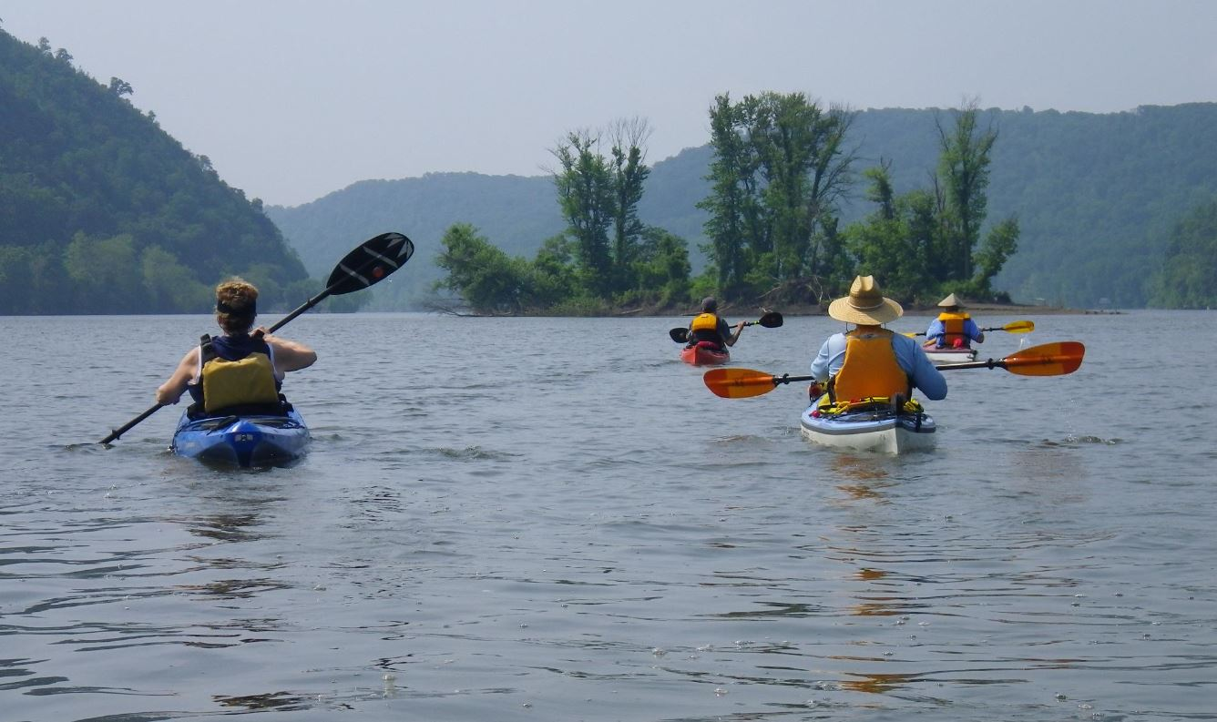 Group of four kayakers floating together looking downstream at an island